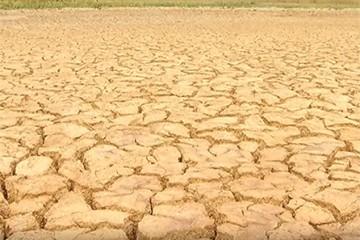 Série evidencia a seca no Norte de Minas