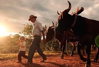Cotidiano rural do interior mineiro em destaque na Faixa de Cinema
