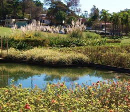 Burle Marx - jardim