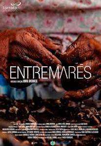 cartaz_faixadecinema_entremares