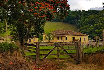Patrimônio imaterial do interior de Minas Gerais em destaque no Jornal Minas